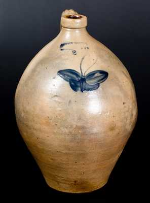 JULIUS NORTON, / BENNINGTON VT Stoneware Jug w/ Cobalt Butterfly Decoration, c1841-44