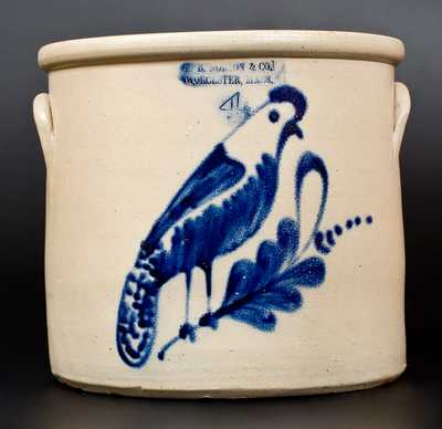 F. B. NORTON & CO. / WORCESTER, MASS. Stoneware Crock w/ Unusual Parrot Decoration