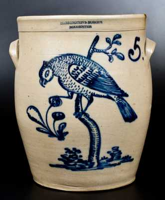 Exceptional HARRINGTON & BURGER / ROCHESTER Stoneware Jar w/ Elaborate Parrot Design